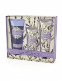 AAA Lavender Bath & Body Collection